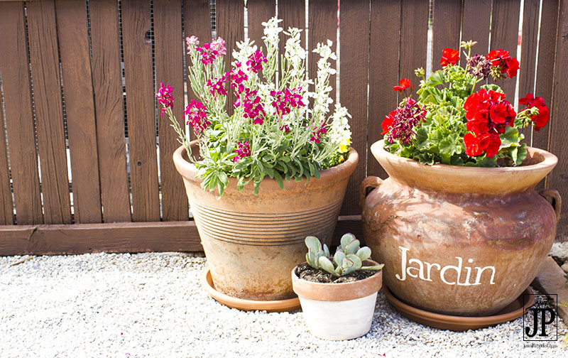 Superbe Patio Flowers In Stenciled Terra Cotta Pots JPriest
