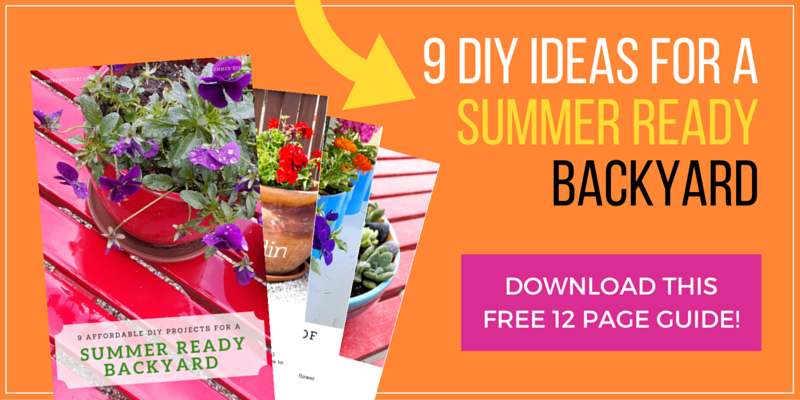 Click here to download 9 DIYs to make your backyard summer ready on the cheap!