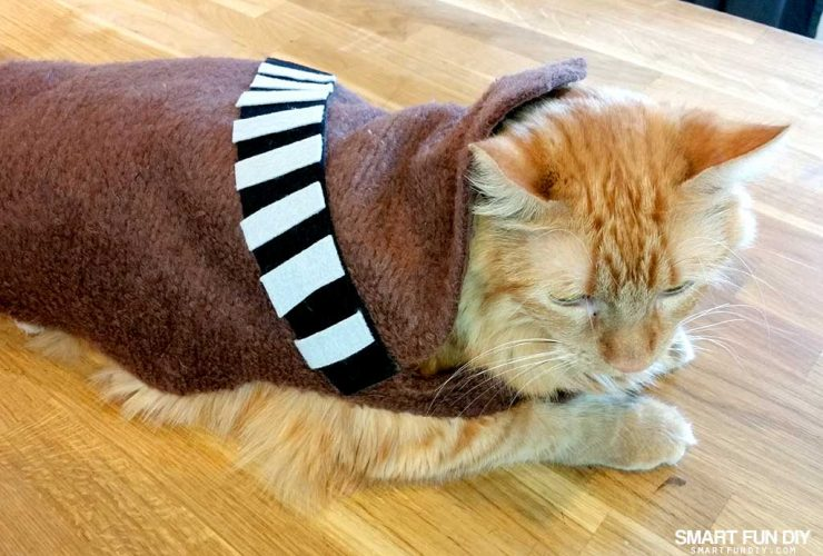DIY Chewbacca Cat Costume
