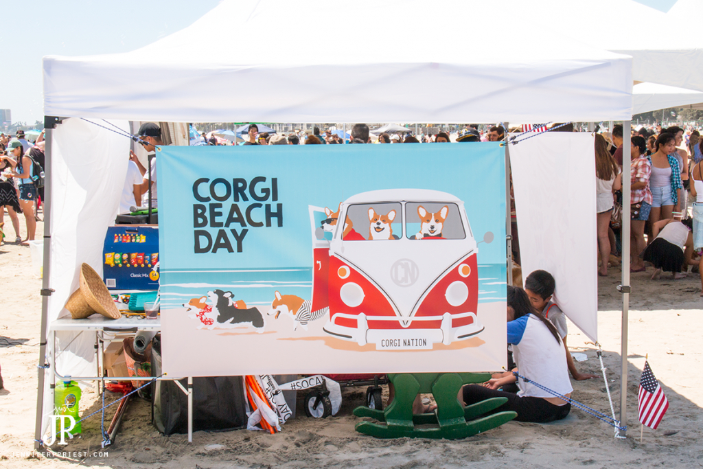 Long-Beach-Corgi-Beach-Day-jenniferppriest