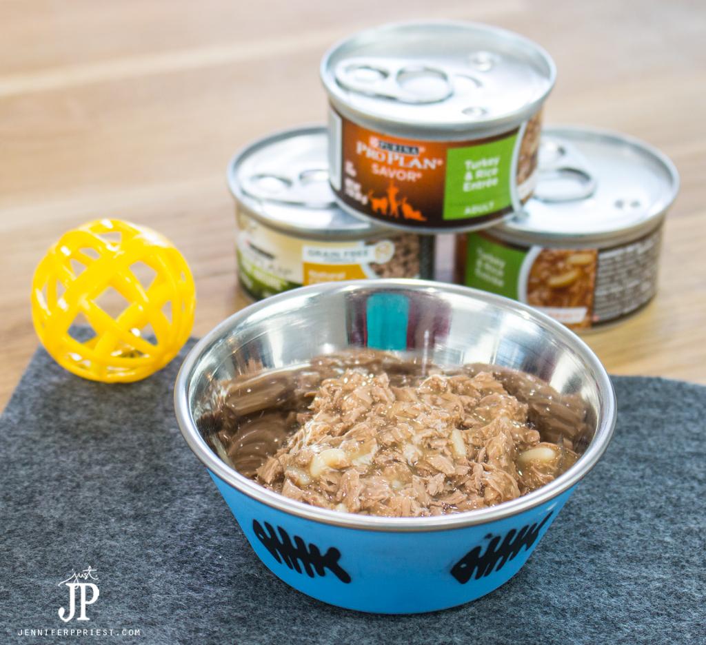 Purina-Pro-Plan-Cat-Food-jenniferppriest