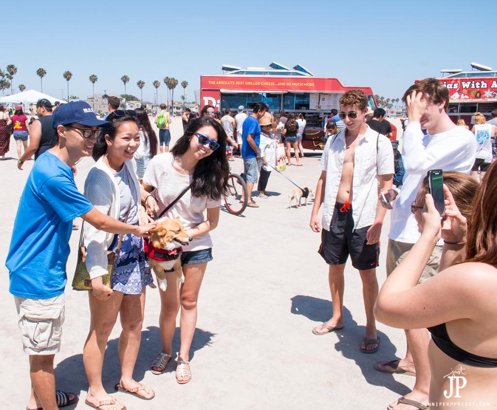 SoCal-Corgi-Beach-Day-Long-Beach-California-July-2-2016-jenniferppriest
