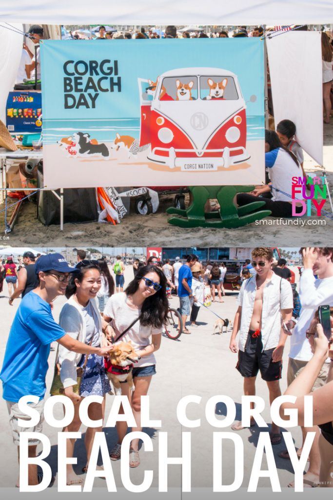 SoCal Corgi Beach Day - what to expect and how to find out about this year's event. If you love CORGI dogs, you gotta go to this So Cal event!