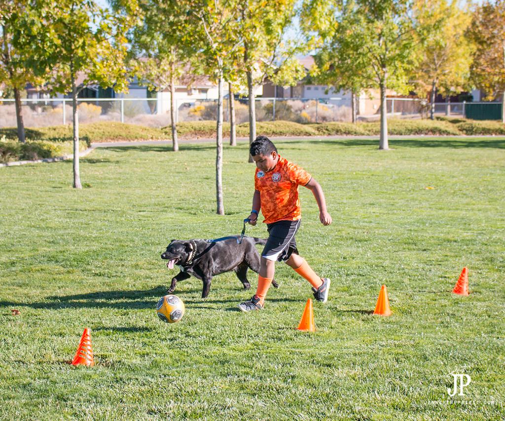 dribble-ball-with-dog-soccer-jenniferppriest