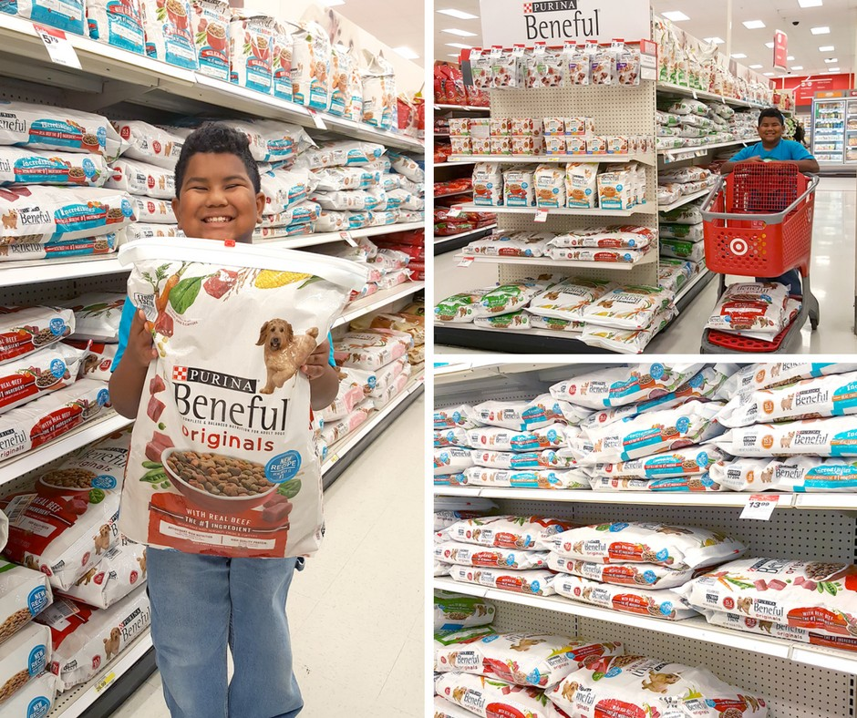 find-purina-beneful-at-target