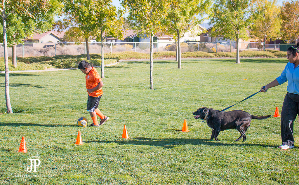 run-as-family-with-dog-playing-soccer-jenniferppriest