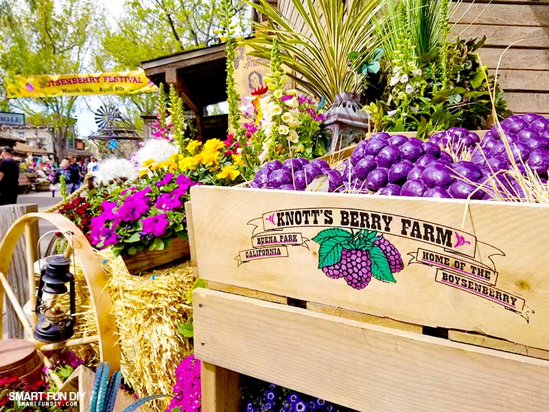 Decorations at Knott's Berry Farm Boysenberry Festival